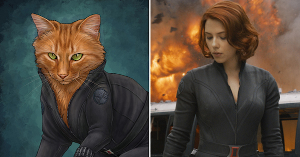 Cats Dressed As Your Favorite Marvel Super Heroes!