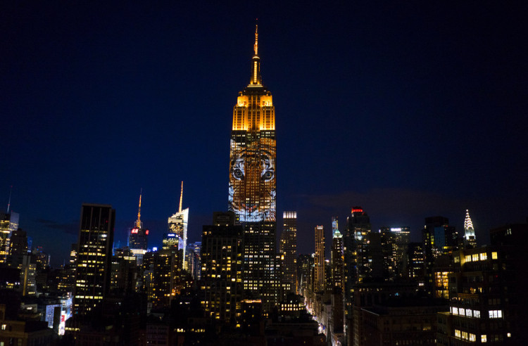 The Empire State Building's Newest Light Show Is Absolutely Stunning